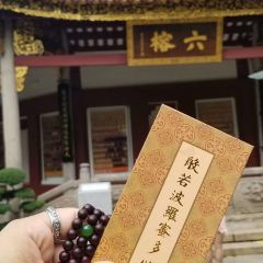 Temple of the Six Banyan Trees User Photo