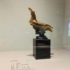 沉香博物館用戶圖片
