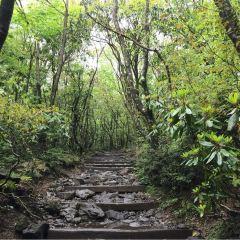 漢拿山國立公園用戶圖片