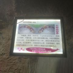 Bozhouhaiyang World User Photo