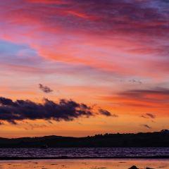 菲利普島用戶圖片