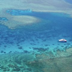 摩爾外堡礁用戶圖片
