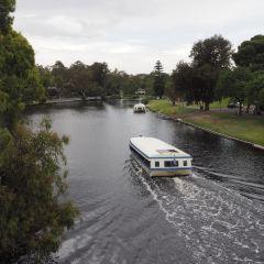 Torrens River User Photo
