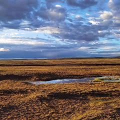 沱沱河用戶圖片