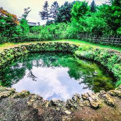 忍野八海のユーザー投稿写真