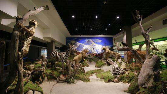 산시(섬서) 자연박물관
