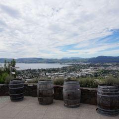 Stratosfare Rotorua用戶圖片