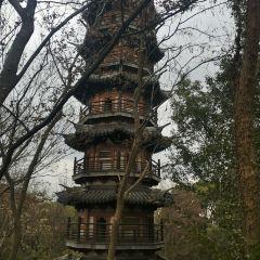 서산 국립산림공원 여행 사진