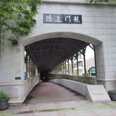 통영해저터널 여행 사진