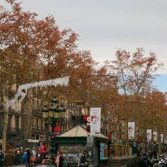 Las Ramblas User Photo