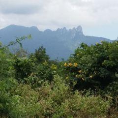 Qixianling (Seven Fairies Ridge) Hot Spring National Forest Park User Photo