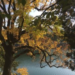 Wenchang Court User Photo