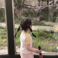 南通森林野生動物園用戶圖片