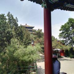Jingshan Park User Photo