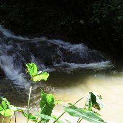 Ton Sai Waterfall User Photo