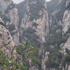 嵩山風景名勝區用戶圖片