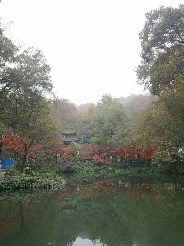 Autumn-Admiring Pavilion