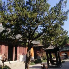 Guoqing Scenic Area User Photo