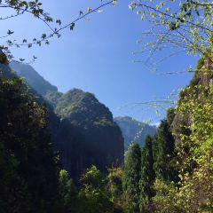 Shenxianju User Photo