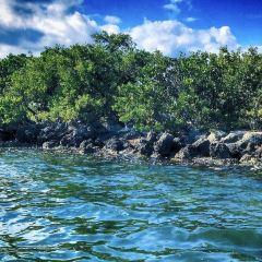 Biscayne National Park User Photo