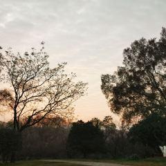 梅花穀公園用戶圖片