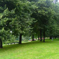 Churchillparken User Photo