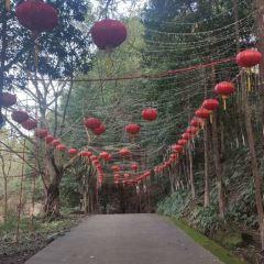 Shenlong Mountain Ba People's Castle User Photo