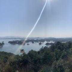 龍山島用戶圖片