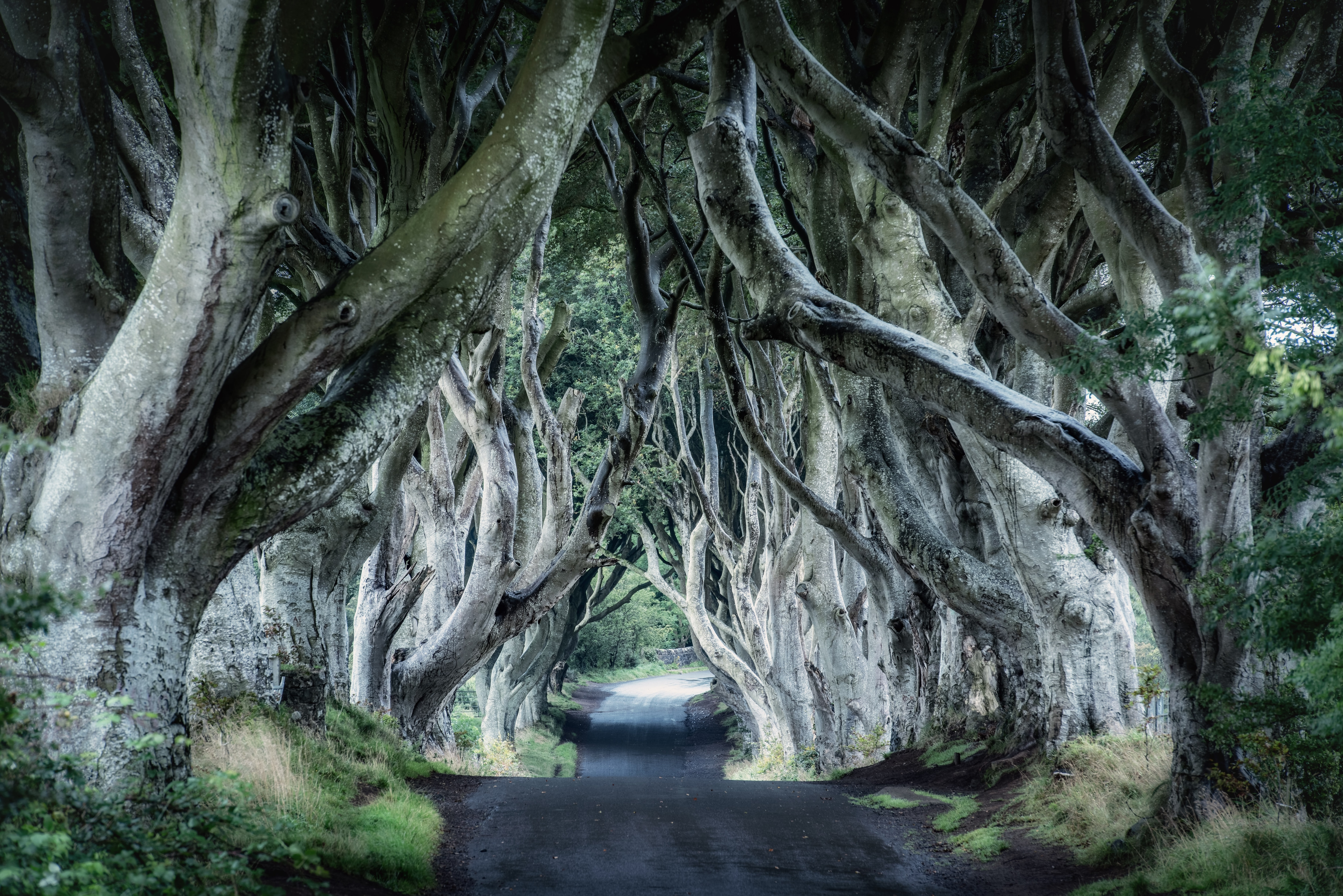Top-10 Scariest Nature Adventures You Can Visit for Halloween 2021