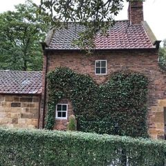 쿡 선장의 집 여행 사진