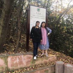東石筍風景區用戶圖片