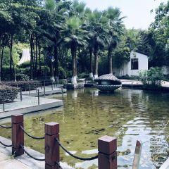 重慶園博園用戶圖片