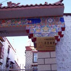 丹傑林寺用戶圖片