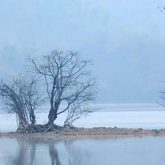 黃山黟縣奇墅湖用戶圖片