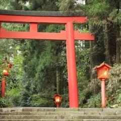 箱根神社張用戶圖片
