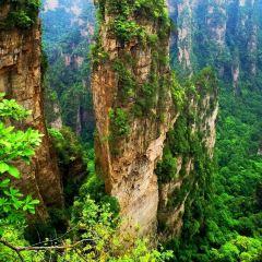 Wulongzhai User Photo