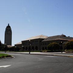 斯坦福大學用戶圖片