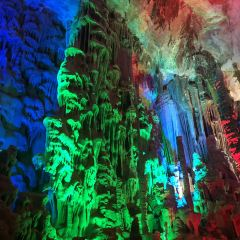 Bama Crystal Palace User Photo