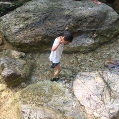 Nanhai Bay Forest Ecological Park User Photo