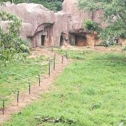 허페이 야생동물서식지 여행 사진