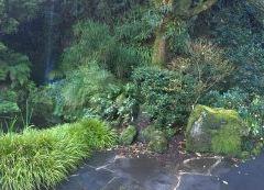 Eden Garden User Photo