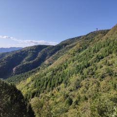 Mangshan Forest Park User Photo