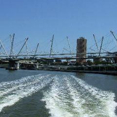 Kurilpa Bridge User Photo