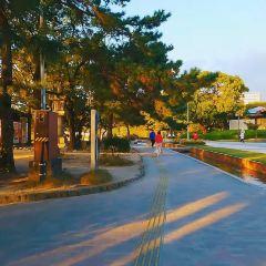 大濠公園のユーザー投稿写真