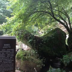Tiantai Mountain User Photo