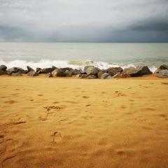 珍拉丁灣用戶圖片