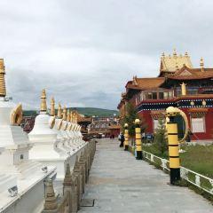 Dajin Temple User Photo