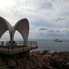 Xiao Qingdao User Photo