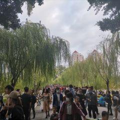 西湖公園用戶圖片