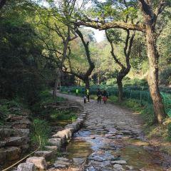 구홍정 여행 사진